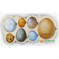 Кто живёт в яйце?