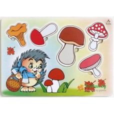 Учим грибы